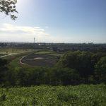 行田市は埼玉県名発祥の地〜古墳や田んぼアートも〜