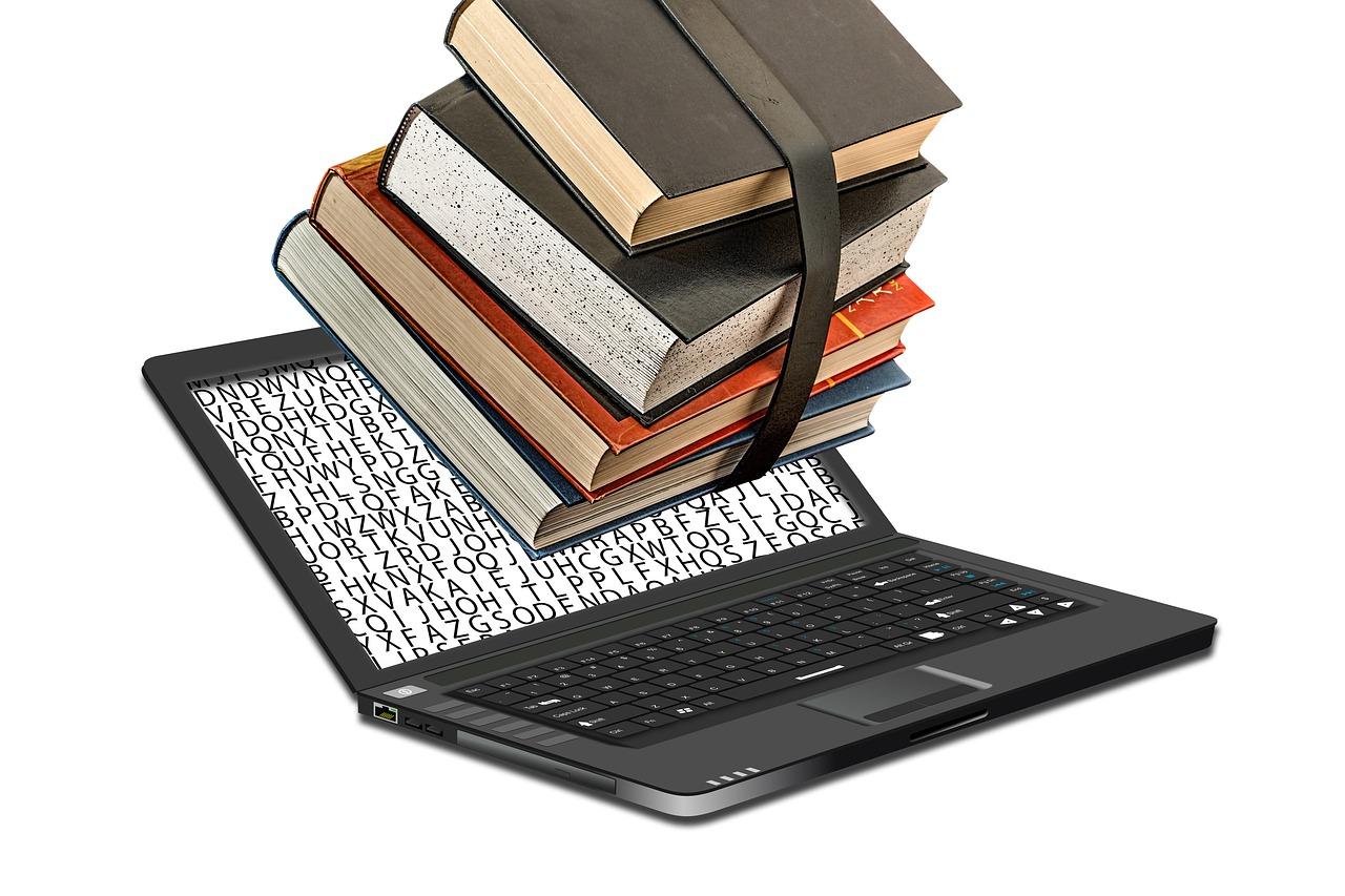 役員報酬の相場が知りたい。他社情報は書籍からでも手に入ります。