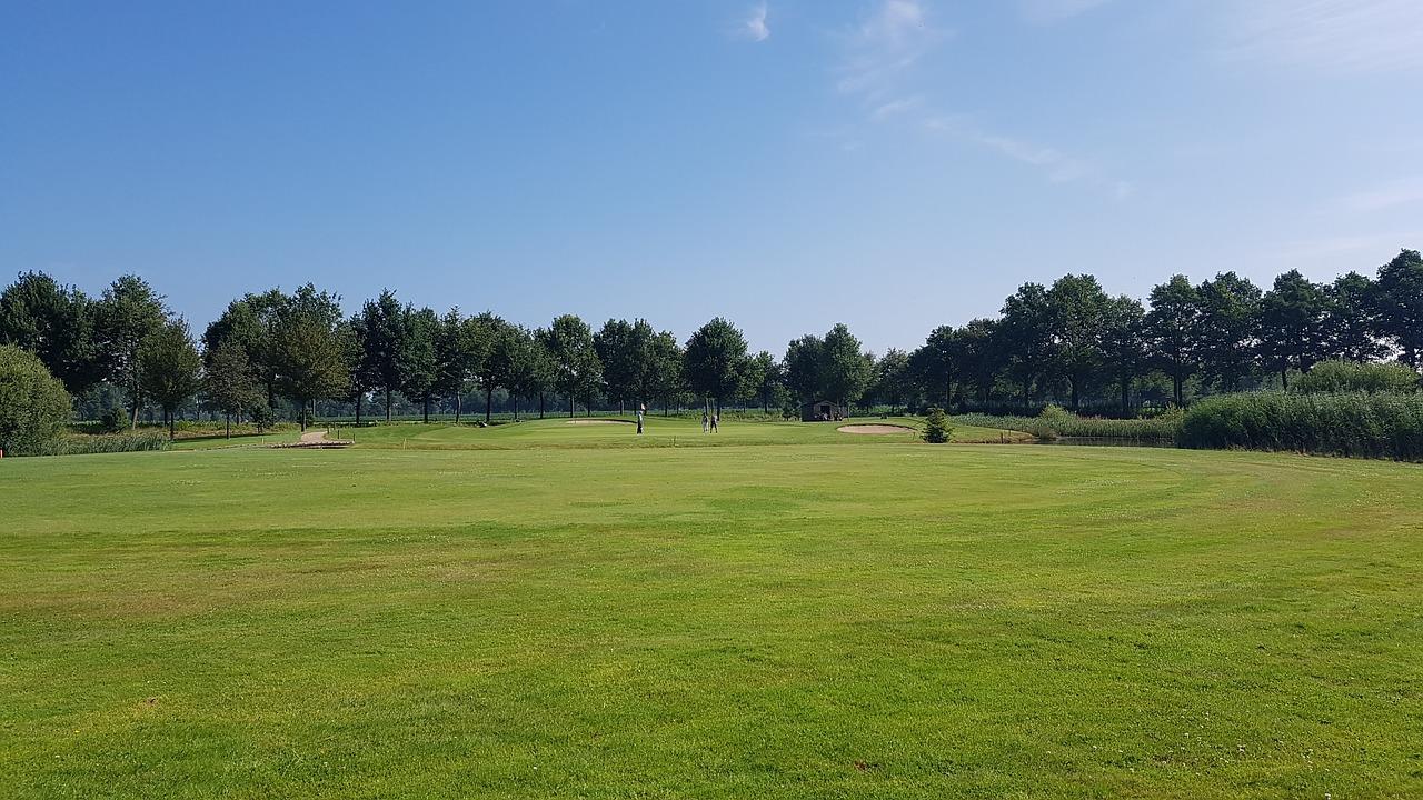 ゴルフ場での花粉症対策としてワセリンを試し中。